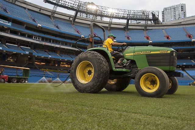 Sod Grass Turf Green Install