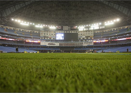 Rogers Centre Final Stages